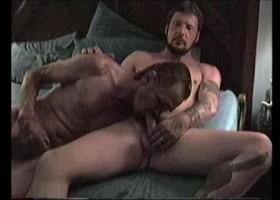 Donny & David